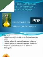 analiza filierei de uleiuri comestibile