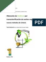 Biodiesel Transesterificacion