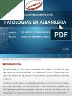 Patologia en Albañileria