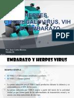 Embarazo e infecciones virales.