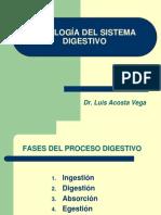 7. FISIOLOGÍA DEL SISTEMA DIGESTIVO