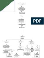 Pathway Hipoglikemia Fix