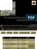 The consequences of chernobyl accident