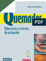Quemados Valoración y criterios de actuación.pdf