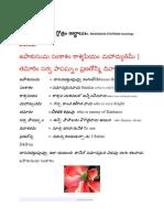 Navagraha Stotram. With Telugu Meanings