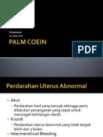 PALM COEIN Presentasi