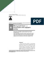 book chapter (2) - 2007 - lecht et al