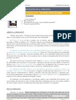 psicologc3ada-de-la-atencic3b3n-tema-1.pdf