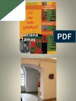 Luciana Tamas - Ce nu este gaspext