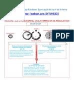 Résumé - Le cycle sexuel de la femme et sa régulation