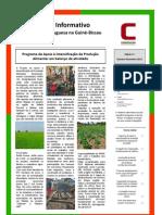 Boletim nº 11 da Cooperação Portuguesa na Guiné-Bissau - outubro a dezembro 2012