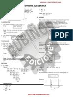 29810954 Division Algebraica