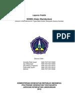 Laporan Solar Desinfection (SODIS)