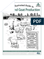 Goat Farming Investment Proposal - SL EP | Goat | Livestock
