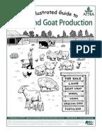 sheep safekeeping your plan