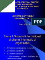 Curs Sisteme Contabile Informatizate (4)