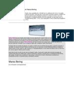 Marea Bering(2)