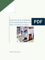 Relación de la contaminación de las partículas finas y daño cerebral en niños