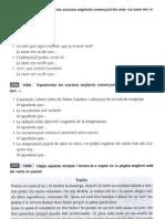 Act. ampliació verb II