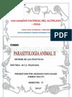 Universidad Nacional Del Altiplano Parasitologia II