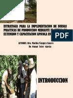 ESTRATEGIA PARA LA IMPLEMENTACION DE BUENAS PRACTICAS DE PRODUCCION MEDIANTE EL SITEMA DE EXTENSION Y CAPACITACION APICOLA EN CUBA