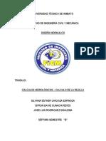CALCULOS HDROLOGICOS, CALCULO DE REJILLA