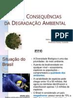 Causas e Consequências da Degradação Ambiental