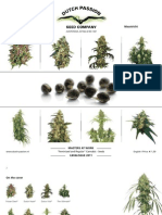 Dutch Passion Seed Catalog