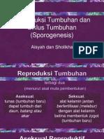 Reproduksi Tumbuhan Dan Siklus Tumbuhan (Sporogenesis)