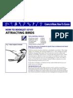 Attracting Birds.pdf