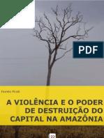 A violência e o poder de destruição do capital na Amazônia