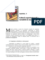 3.Cultura Organizationala - Variabila de Management