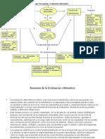 Mapa Conceptual Evaluación Alternativa