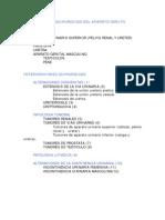 Es-Intervenciones Urologicas Definitiva
