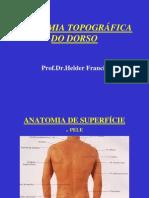 Anatomia Topografica Do Dorso 4afase Medicina