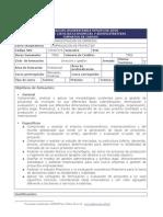 ProgformulacproyectI2009