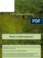 Deforestation+Project