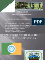 Perfil Epidemiológico de Saúde do Município de Rolim de Moura - RO