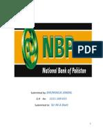 NBP Final Report(S.M) Butt