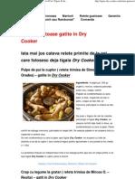 Retete Gustoase Gatite in Dry Cooker