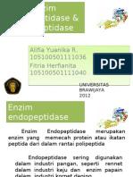 Enzim Endopeptidase & Eksopeptidase