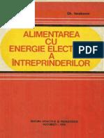Alimentarea Cu Energie Electrica a Intreprinderilor