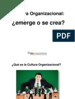 Cultura-Organizativa 2012