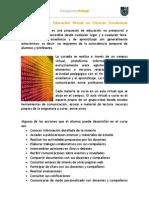 La propuesta de Educación Virtual en Ciencias Económicas