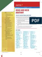Head & Neck Anatomy