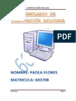 FloresP_informe