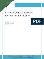 Energy Plantation 280911[1]