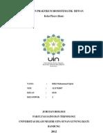 Laporan Praktikum Biosistematik Hewan-pisces