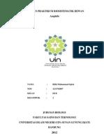 Laporan Praktikum Biosistematik Hewan-Amphibia