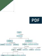 Mapa Conceptual de Ideas Previas